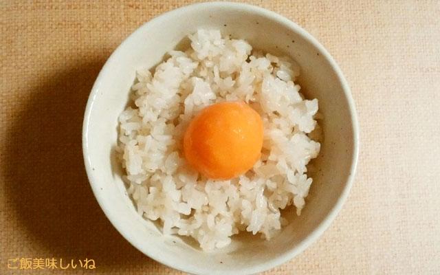 冷凍卵の黄身をご飯に乗せたところ