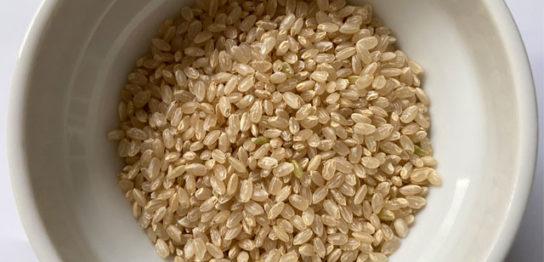 器に入れた玄米
