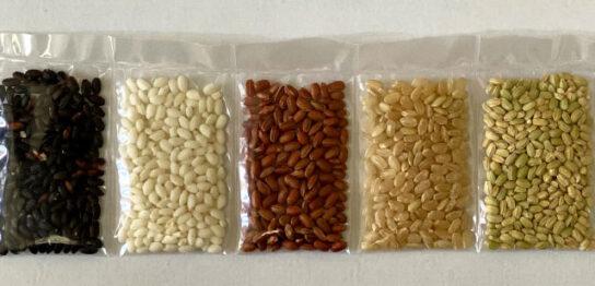 赤米などの古代米